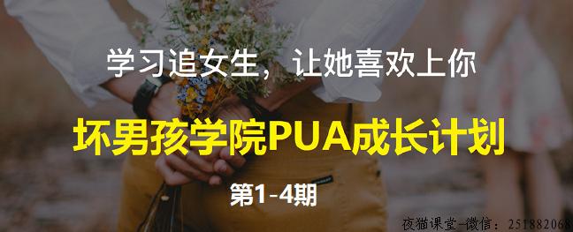 坏男孩学院:PUA成长计划,共4期-46节课程(已完结)