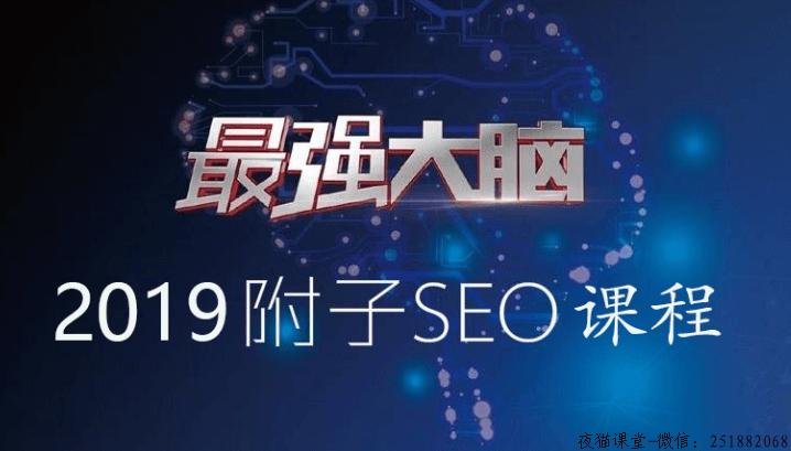精品干货:2019附子seo实战VIP培训教程