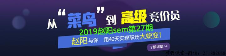 2019赵阳百度竞价sem培训课程(第27期完整)