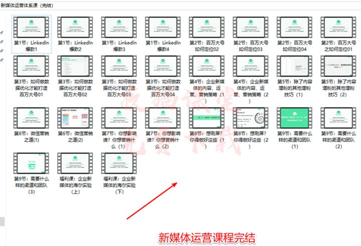 馒头商学院:新媒体运营视频课程(完结)