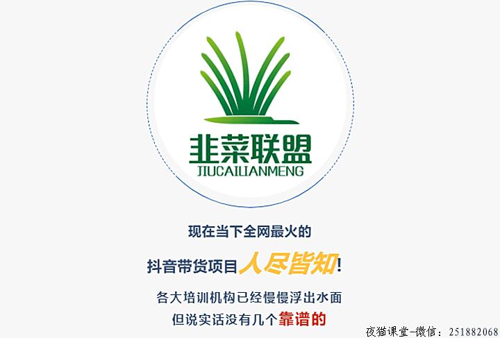 韭菜联盟:高端抖音社群带货培训课程(核心知识)