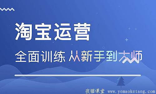 电商培训:从新手到大师淘宝运营课程介绍(完整版)